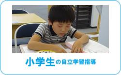 小学生の自立学習指導
